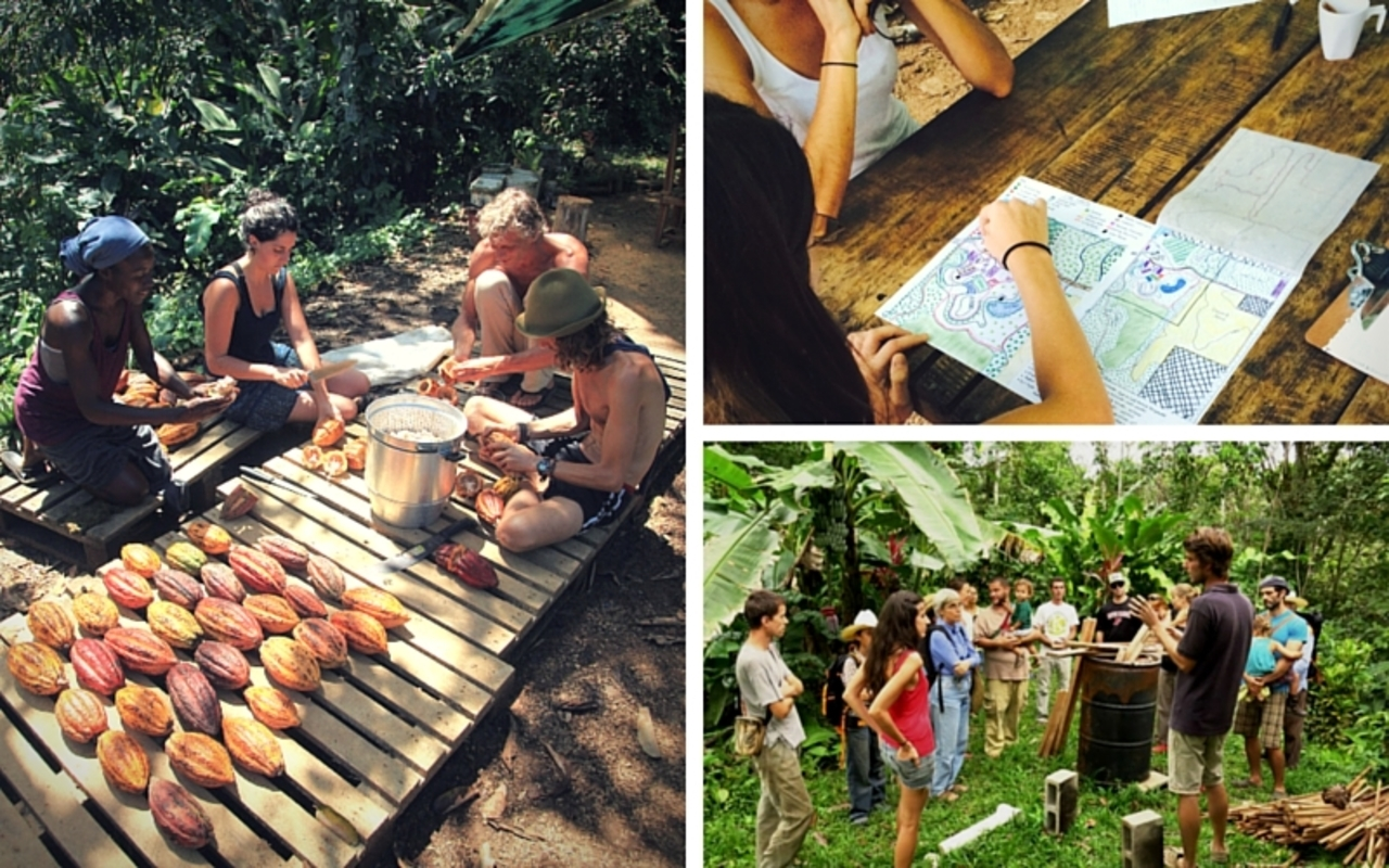 Permaculture Design Certificate Course Summer B Event