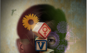 Gestalt Practice and Cortical Field Re-Education: Developing Emotional and Somatic Resources