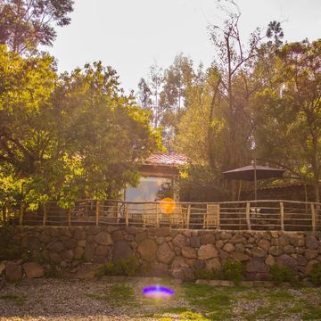Into the Heart of Light: A Yoga & Medicine Immersion/Retreat