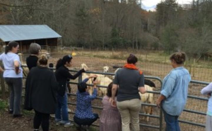 Knitting Retreats In North Carolina : Southeastern yarn and yoga retreat event guru