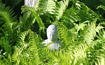 Beginner Meditation: Techniques I - III