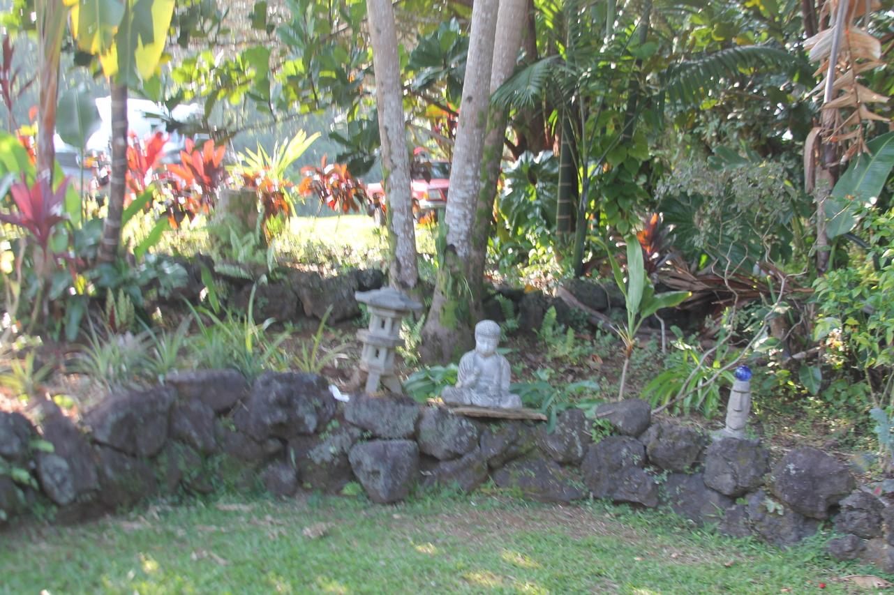 Angel Farms Big Island Hawaii