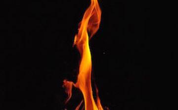 "Embrace the Medicine, ""Fuego"" 11 Day Ayahuasca Retreat"