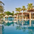 Desert Palm Retreat