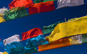 Losar ~ Tibetan New Year Celebration