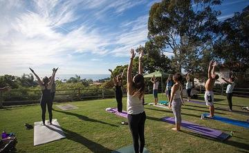 FREE Yoga in the Park with Vinyasa Arts!