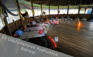 14 Day Intensive Ayahuasca Retreat