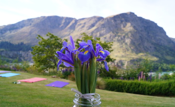 Queenstown Wellness Retreat - One Day