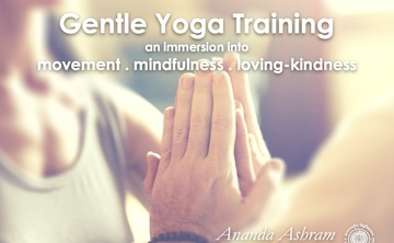 Gentle Yoga Training
