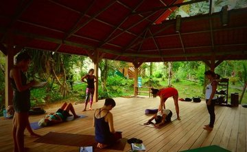 100h Yoga Touch: Artful Adjustments & Assists Teacher Training Course