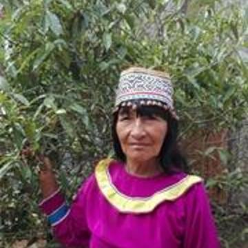 Maestra Amalia Pinado
