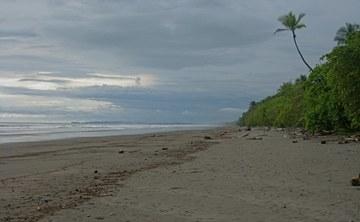 """Love Raw Food & Yoga Costa Rica Retreat"" with Karen and Gabriela Ranzi"