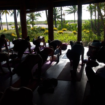 200hr Swaha Yoga Training