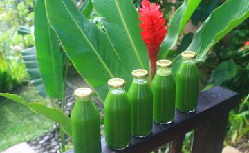 7 Day Detox Nutrition & Yoga Retreat in Bali, Ubud