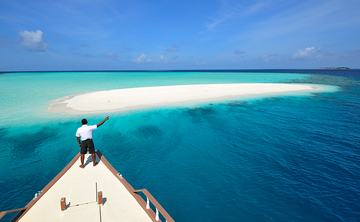 MALDIVES Yoga Retreat Boat Cruise W/ Diving (Whale Sharks and Manta Ray Diving)