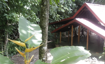 Ashtanga Yoga Women's Retreat