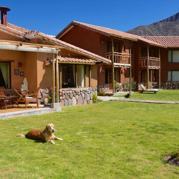 Ayahuasca and San Pedro 10-Day Retreat