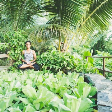 St. Croix Universal Yoga and Ayurveda Retreat- January 26-30, 2017