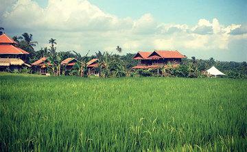 Hot Yoga Teacher Training (YA - RYT) - 250hrs, Bali