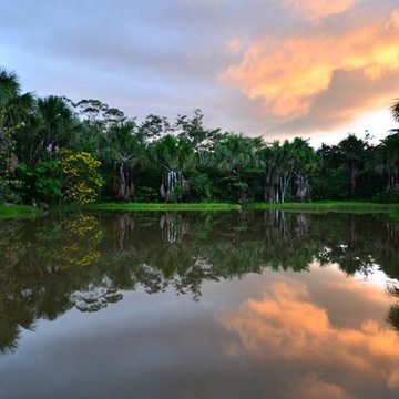 7 Day Ayahuasca Retreat (27th March – 2nd April)