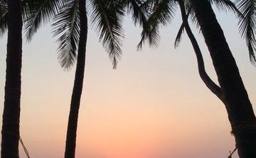YOGA & WINTER SUN NORTHERN KERALA