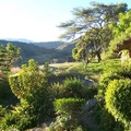 Sacred Valley Yoga Farm