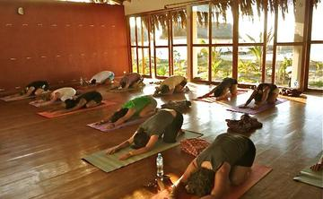 200 RYT Vinyasa Flow Yoga Teacher Training