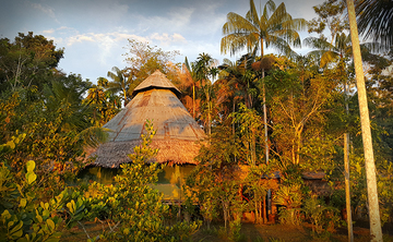 10 Day Individualized Ayahuasca Retreat