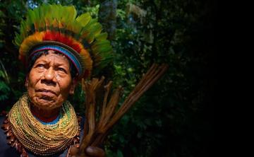 7 DAY AYAHUASCA AWAKENING EXPERIENCE on the Amazon River