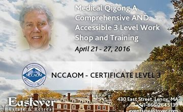 Medical QiGong - A Comprehensive and Accessible 3-Level Workshop & Training