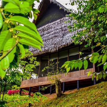 8 Day Ayahuasca Retreat - May 18-25, 2017