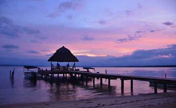 Tropical Transformation 7 Day Yoga + Holistic Health Retreat