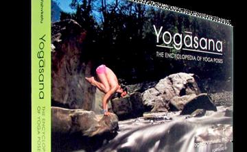 Akhanda Yoga Wellness Bundle