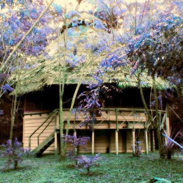 Gaia Tree Group Retreat 13th – 20th February