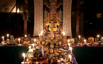 Ayahuasca SpiritQuest Listening to the Plants