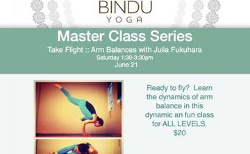 Arm Balances with Julia Fukuhara - Take Flight!
