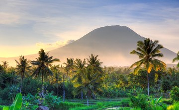 Art of Living Retreats - Ubud, Bali   (yoga, raw food, detox, meditation, transformational)