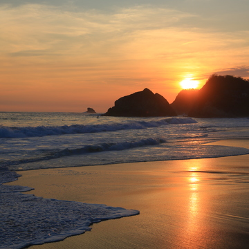 Art of Living Retreat - MAZUNTE, MEXICO (yoga, raw food, detox, meditation, transformation)