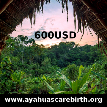 9 Days Ayahuasca Rebirth Retreat (1st July - 9th July)