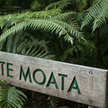 Te Moata Retreat