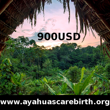 15 Days Ayahuasca Rebirth Retreat (21st August - 5th September)