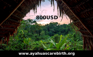 13 Days Ayahuasca Rebirth Retreat (July 1st – July 13th)