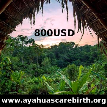 13 Days Ayahuasca Rebirth Retreat (July 17th – July 29th)