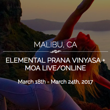 Embodying Flow – Elemental Prana Vinyasa as Movement Meditation (elective counts as Intro Embodying the Flow/MOA with LIVE Online)