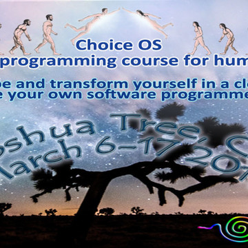 Choice OS: A Self Programming course for humans