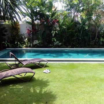 Bali Ayahuasca retreat (Mar 2017)