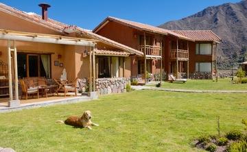 Ayahuasca and San Pedro Retreat