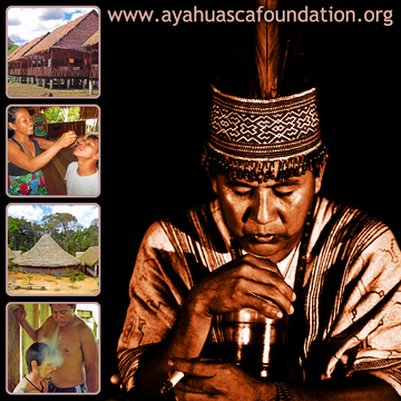 The Ayahuasca Foundation
