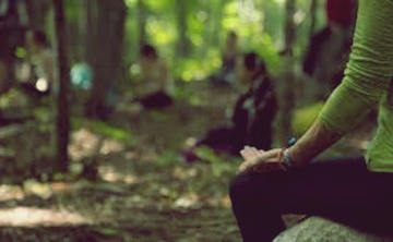 Stepping into Silence: A 7-Day Meditation Retreat
