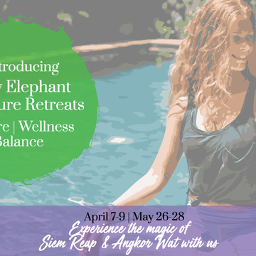 Baby Elephant Signature Siem Reap Retreats 2017